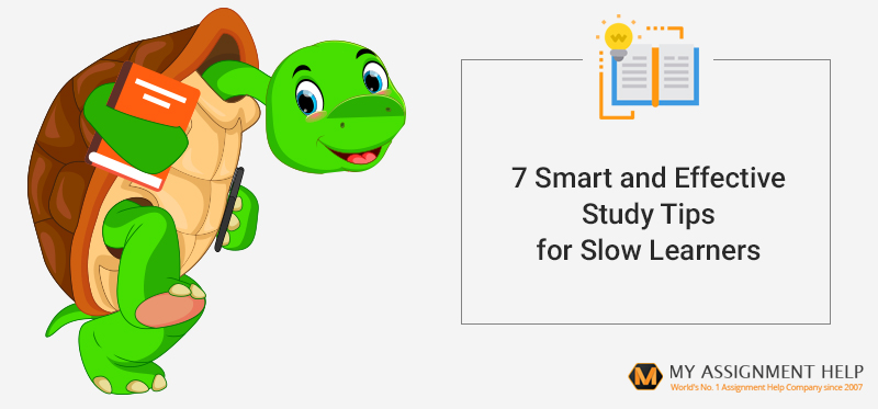 Assignment Help for Slow Learners