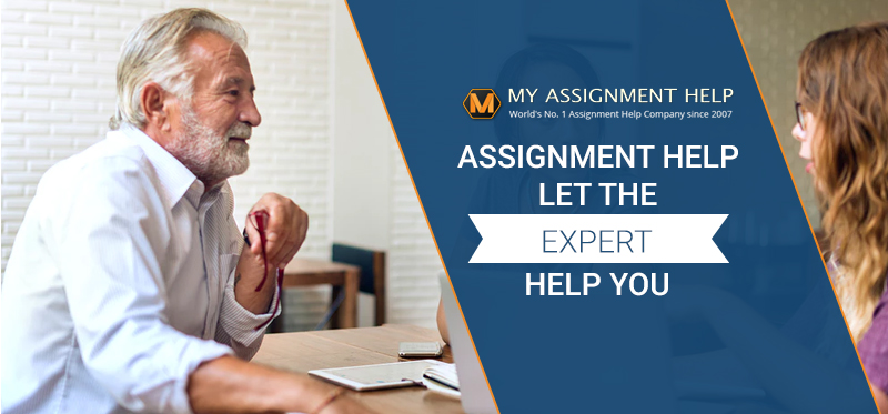 my assignment expert help