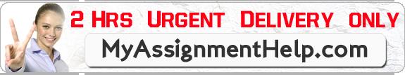 buy assignment online