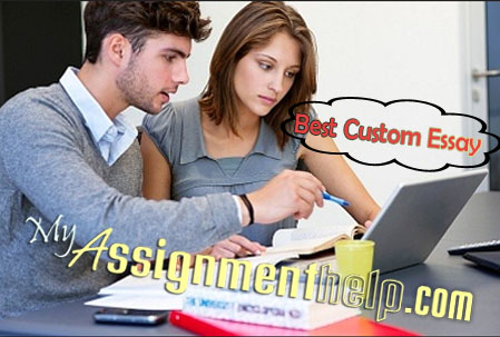best custom essays website term paper academic writing service best custom essays website