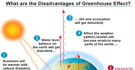 Know The Disadvantages Of Green House Effects