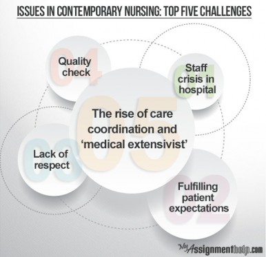 contemporary issues in nursing essay