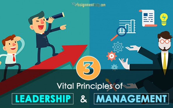 dissertations leadership management Theory about leaders, leadership and management, leadership style of male and female, than about research study and finding it is the main of research writing in the thesis.