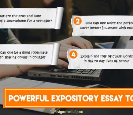 what makes up an expository essay