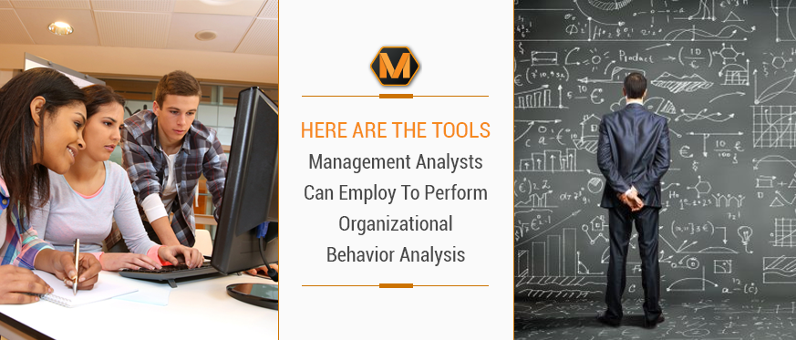 Here Are the Tools Management Analysts Can Employ To Perform Organizational Behavior Analysis