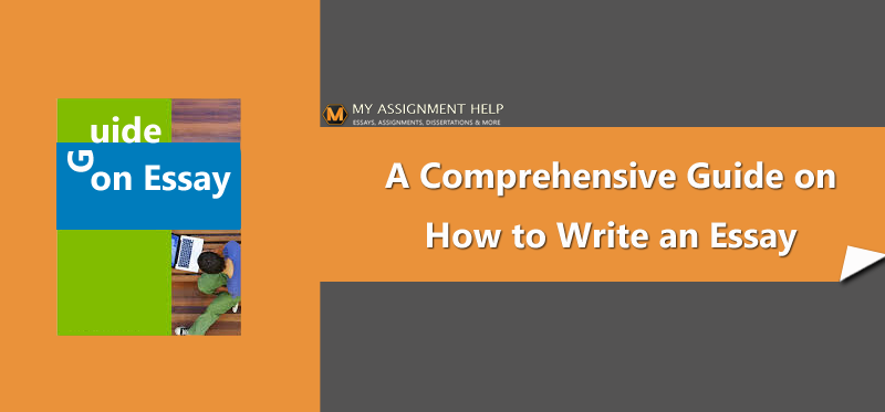 A Comprehensive Guide on How to Write an Essay