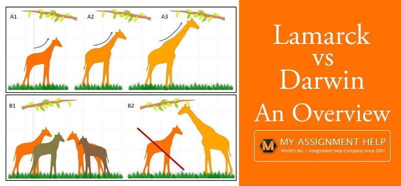 Lamarck vs. Darwin Theory