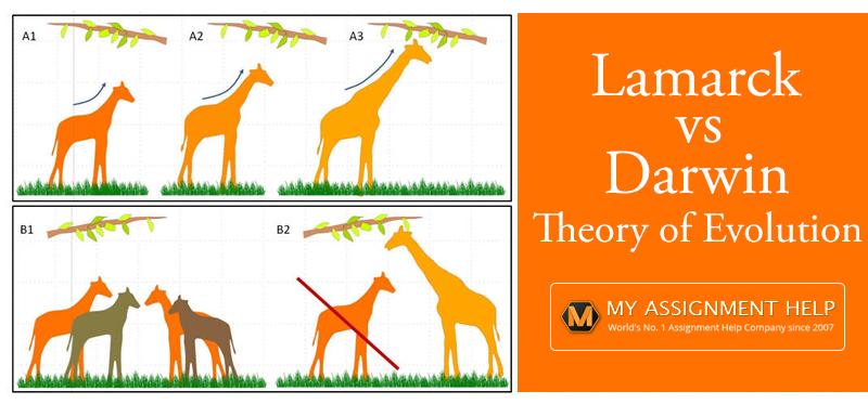 Lamarck Vs. Darwin Theory Of Evolution