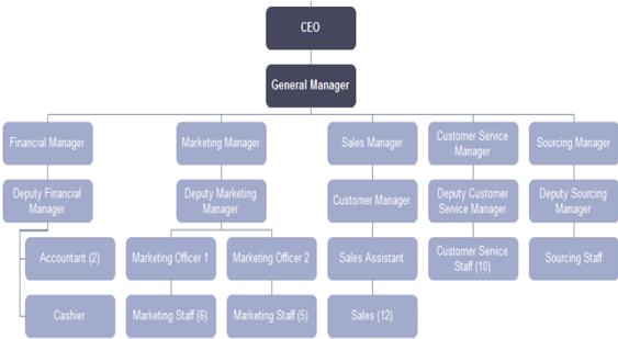 Organisational Structure at Hungry Jack's