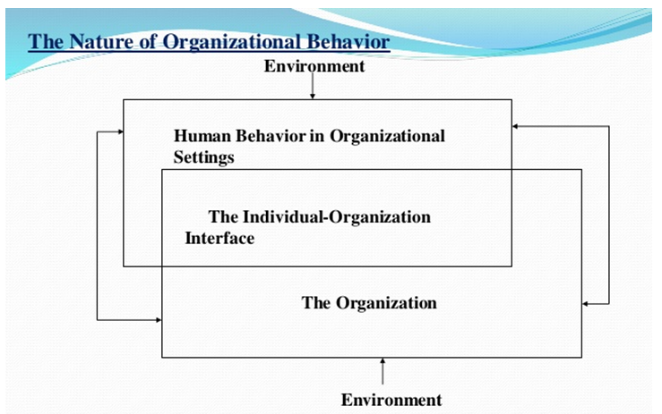 organisational behaviour case studies essay Organizational behaviour define leadership and fingers on her desk case studies from the field of organizational behavior that this case.