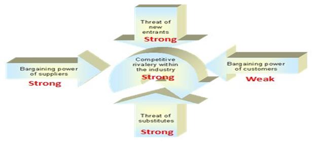 Porter's 5 Force Analysis
